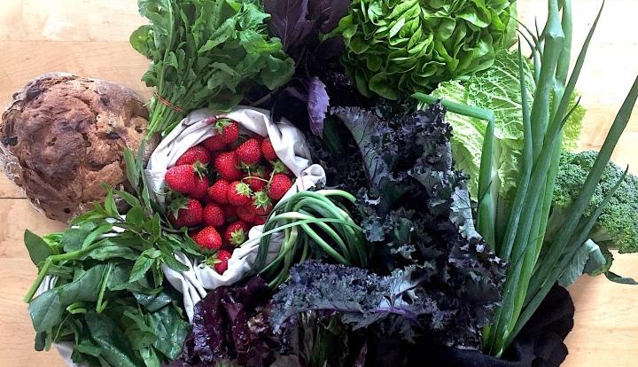 Manger des fruits et légumes biologiques, locaux et de saison avec un panierBIO!