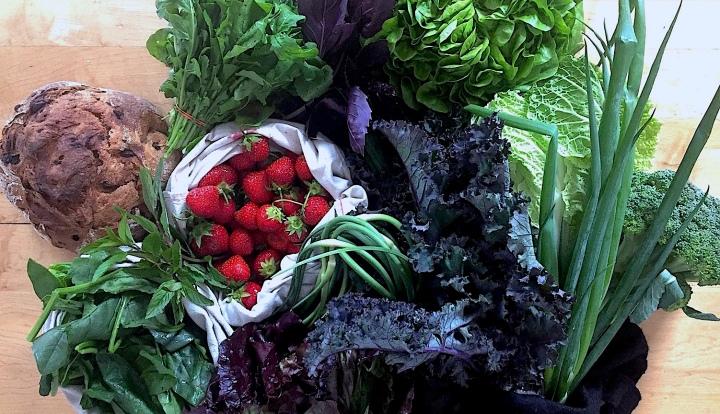 Manger des fruits/légumes biologiques, locaux et de saison avec un panier BIO, lasolution!